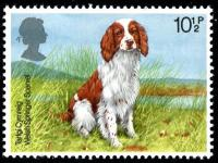 1979 Dogs 10½p