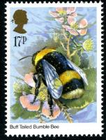 1985 Insects 17p