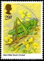 1985 Insects 29p