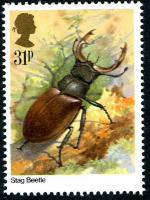 1985 Insects 31p