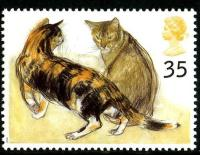 1995 Cats 35p