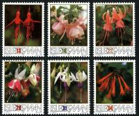 1988 British Fuchsia Society