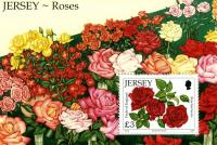 2010 Roses MS