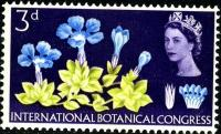 1964 Botanical 3d phos