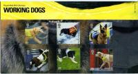2008 Working Dog pack