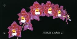 2008 Orchids miniature sheet pack