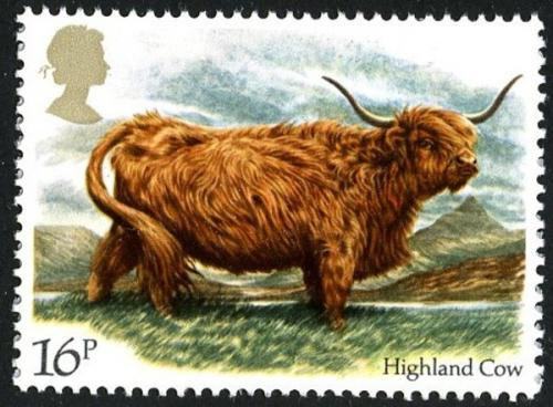 1984 Cattle 16p