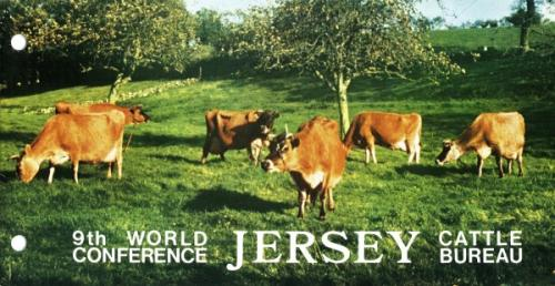 1979 Jersey Cattle pack