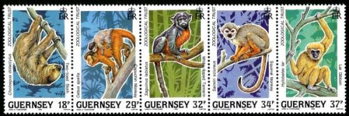 1989 Zoological Trust