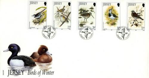 1992 Winter Birds