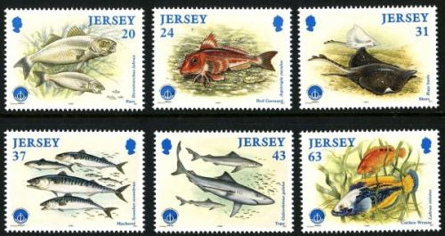 1998 Ocean Fishes