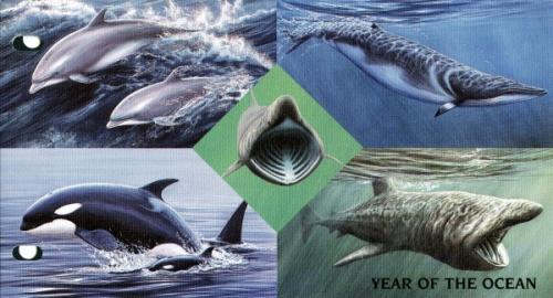 1998 Year of the Ocean pack