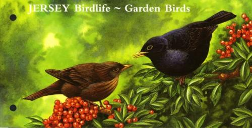 2007 Jersey Birdlife 3 values MS pack