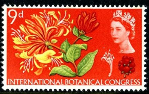 1964 Botanical 9d phos