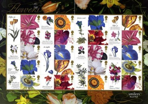 SG: LS11  2003 Flower Paintings
