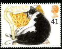 1995 Cats 41p