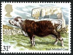1984 Cattle 31p