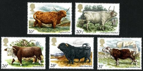 1984 Cattle
