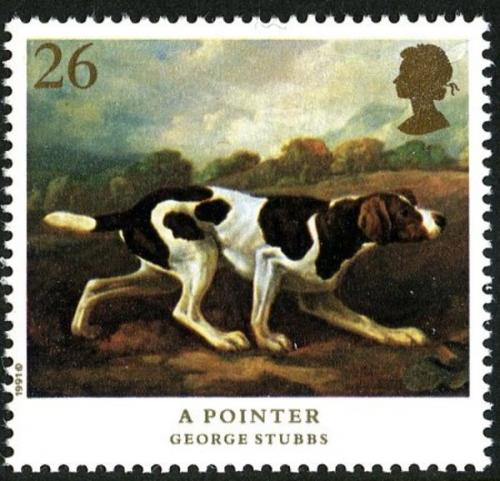1991 Dogs 26p
